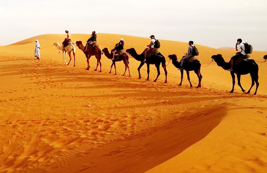 sand-dunes-in-rajasthan