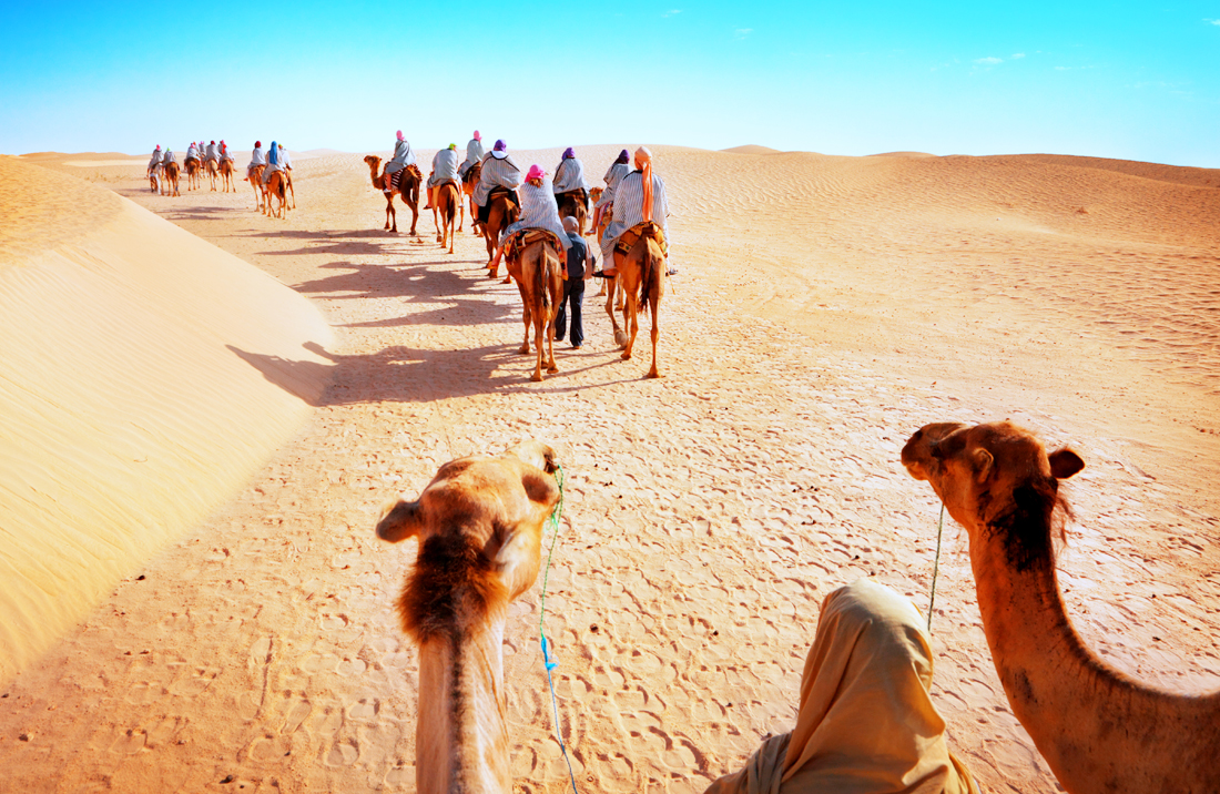rajasthan-camel-safari-tour
